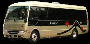 Charter Micro Bus