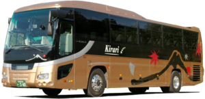 Charter Large Size Bus