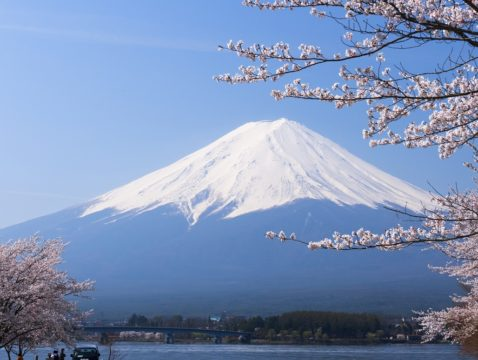 Mt. Fuji 1 Day Tour (10 hours)