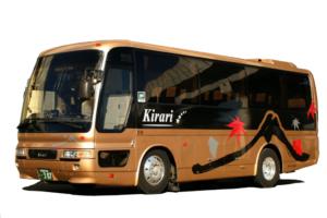Charter Medium Size Bus